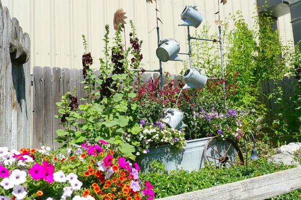 A garden in Silverwood